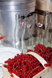 Currants, swing top bottles and steam juicer for homemade currants syrup