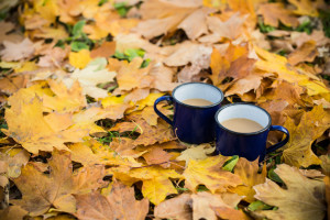Two enamel mugs of hot coffee in the park on yellow autumn leaves.