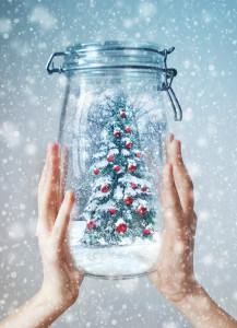 Christmas tree in jar. Christmas concept illustration for web, cover, postcard.